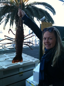 Emers lobster outgrows the palm tree!