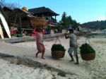 Big seaweed business, on small island next to Bali